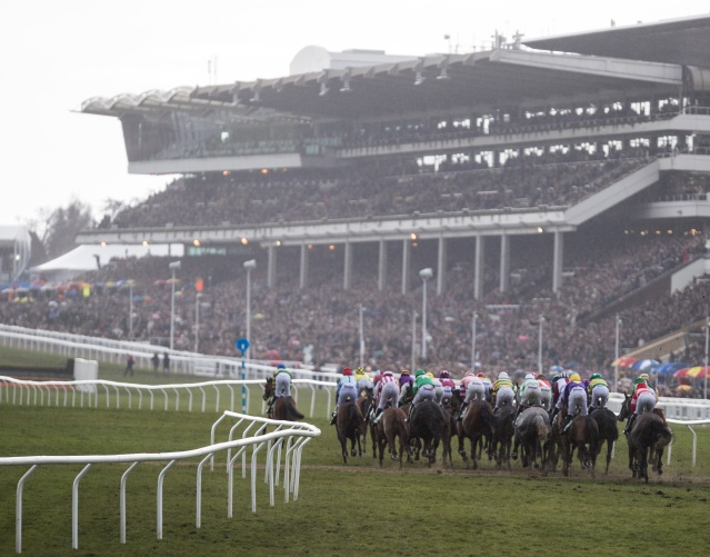 Irish Road to Cheltenham