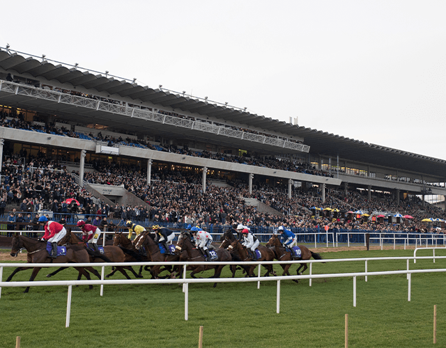 Leopardstown Christmas Festival