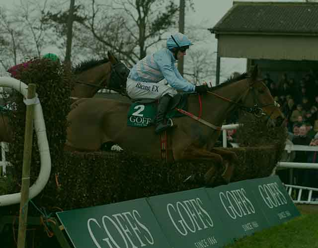 Goffs Thyestes Handicap Chase Day