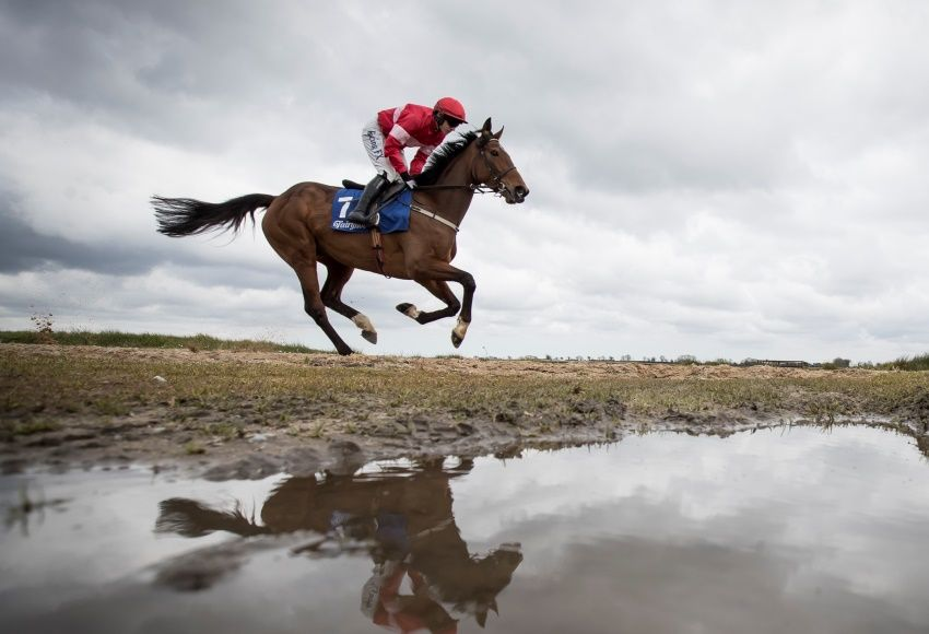 Fairyhouse winter festival,,