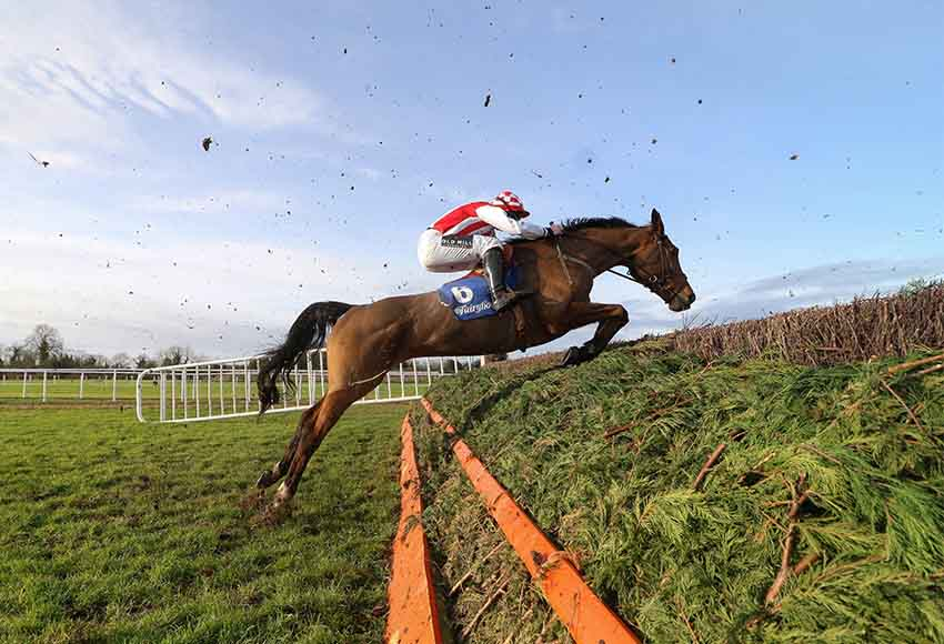 Fairyhouse January Meeting
