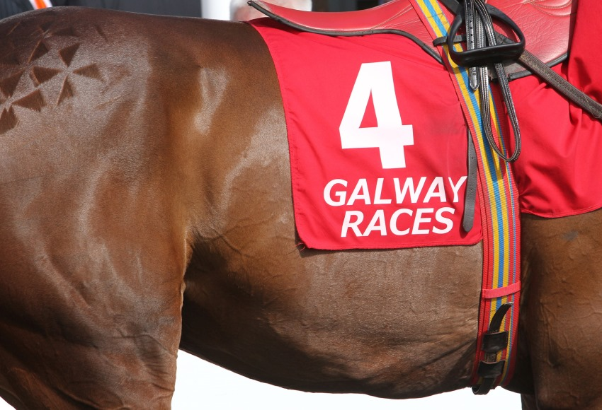 Galway Races Parade Ring