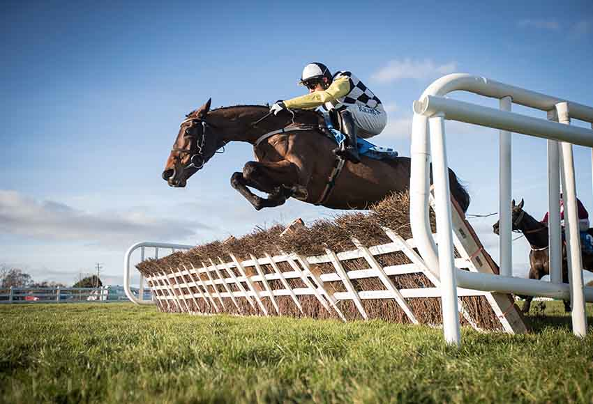 January Jumps Meeting at Naas Racecourse