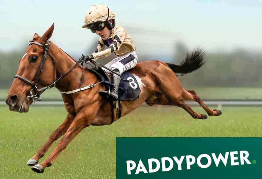Paddy Power Cheltenham Trials Day at Naas