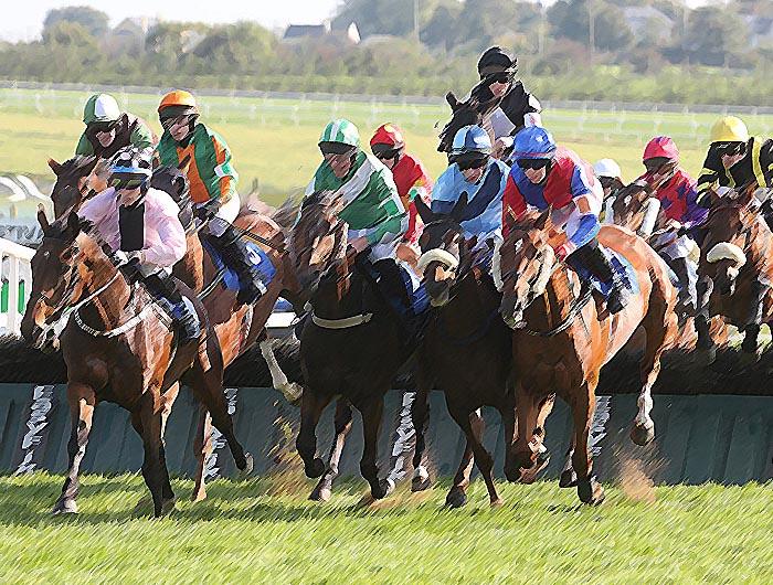 Christmas Horse Racing.Christmas And New Year Racing