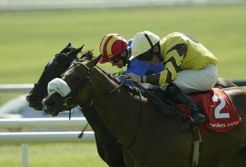 Jockey Data