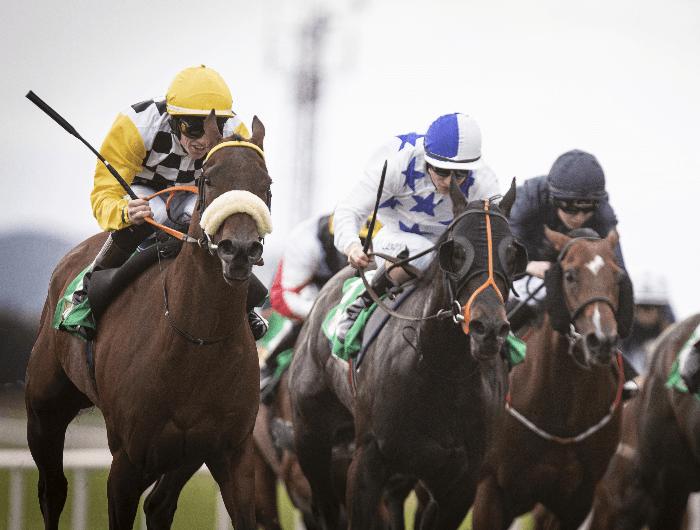 Racecourses | HRI